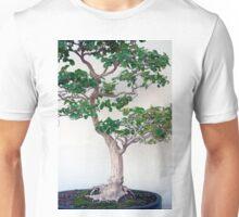 Longwood Gardens - Spring Series 60 Unisex T-Shirt