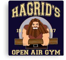 Hagrid's Gym (Harry Potter) Canvas Print