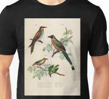 Bilder atlas zur Wissenschaftlich populären Naturgeschichte der Vögel in ihren sämmtlichen Hauptformen Leopold Joseph Fitzinger 1864 036 Unisex T-Shirt