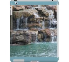Precious Resource - Potomac Falls iPad Case/Skin