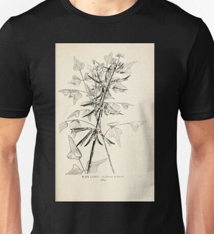 Southern wild flowers and trees together with shrubs vines Alice Lounsberry 1901 087 Erythrina Herbacea Unisex T-Shirt
