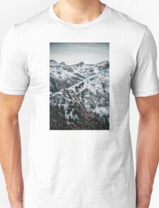 1.17 Unisex T-Shirt