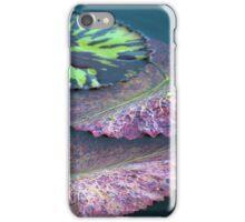 Longwood Gardens - Spring Series 40 iPhone Case/Skin