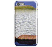 Longwood Gardens - Spring Series 39 iPhone Case/Skin