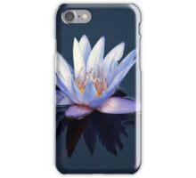 Longwood Gardens - Spring Series 38 iPhone Case/Skin