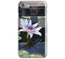 Longwood Gardens - Spring Series 36 iPhone Case/Skin