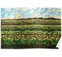 The Vineyards Poster
