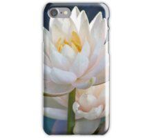 Longwood Gardens - Spring Series 30 iPhone Case/Skin