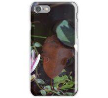 Longwood Gardens - Spring Series 26 iPhone Case/Skin