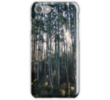 Morning Sun in the woods iPhone Case/Skin