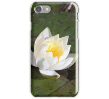 Longwood Gardens - Spring Series 25 iPhone Case/Skin