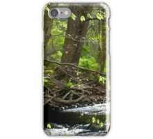 Tree over the River iPhone Case/Skin