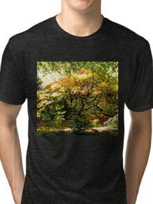 Natures Beautiful Autumn Colours..... Tri-blend T-Shirt