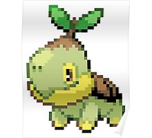 Pokemon - Turtwig Poster