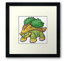 Pokemon - Grotle Framed Print