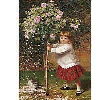 Vintage famous art - James Hayllar - The Rose Tree Photographic Print