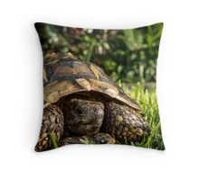 Tortoise Close up in Garden Throw Pillow