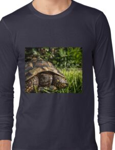 Tortoise Close up in Garden Long Sleeve T-Shirt