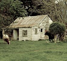Old home for young ones by Duncan Cunningham