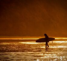 Surfer by Janette Anderson