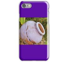 Key West Gecco iPhone Case/Skin