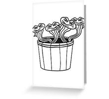 many small evil dangerous comic cartoon snakes bande bucket Greeting Card