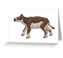 Eurohippus, the early horse from Messel Greeting Card