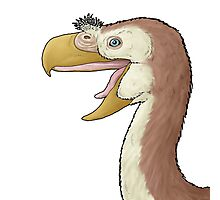 The terror bird, Paraphysornis Photographic Print