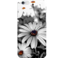 Black and white Daisy iPhone Case/Skin