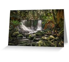 Falls and Ferns Greeting Card