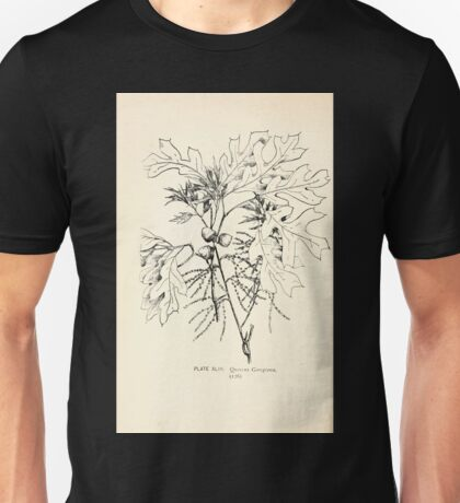 Southern wild flowers and trees together with shrubs vines Alice Lounsberry 1901 043 Quercus Georgiana Unisex T-Shirt