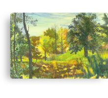 Solar fall  Canvas Print
