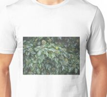 Ivy Seeds Unisex T-Shirt