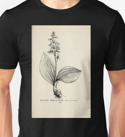 Southern wild flowers and trees together with shrubs vines Alice Lounsberry 1901 031 Large Twayblade Unisex T-Shirt