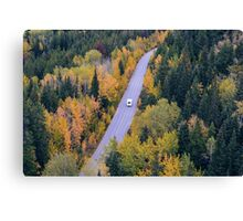 Road in the autumn Canvas Print
