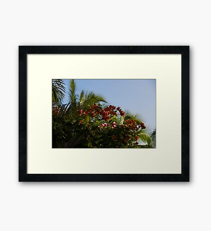 Palm Trees and Tropical Flowers Framed Print