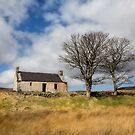 Highland Cottage. by Dave Hare