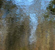 Reflecting Pool Sticker