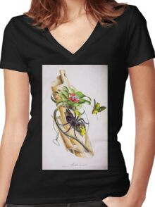 Oiseaux brillans du Brésil Jean Theodore Descourtilz 1834 014 Women's Fitted V-Neck T-Shirt