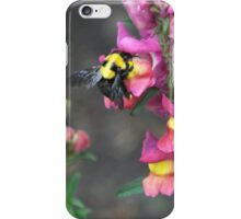 Bumble bee and flower iPhone Case/Skin
