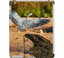 Coming into Land iPad Case/Skin