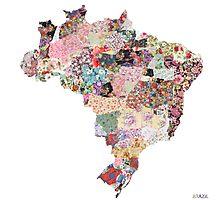 Brazil map Photographic Print