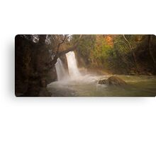 Hermon Stream Nature reserve (Banias) Canvas Print