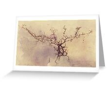 Olfactory bulb neuron - pencil and watercolor Greeting Card