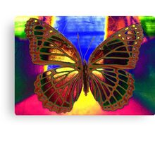 Angel Butterfly Canvas Print
