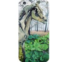 Forest Foal iPhone Case/Skin