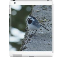 Wagtail At Riverside iPad Case/Skin