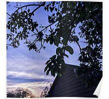 backyard treasures pt 2 Poster