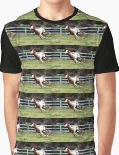 Painted pony Graphic T-Shirt