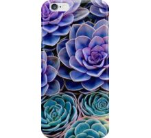 Purple Cacti iPhone Case/Skin